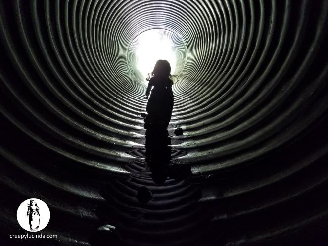 Belfast_tunnelHalo