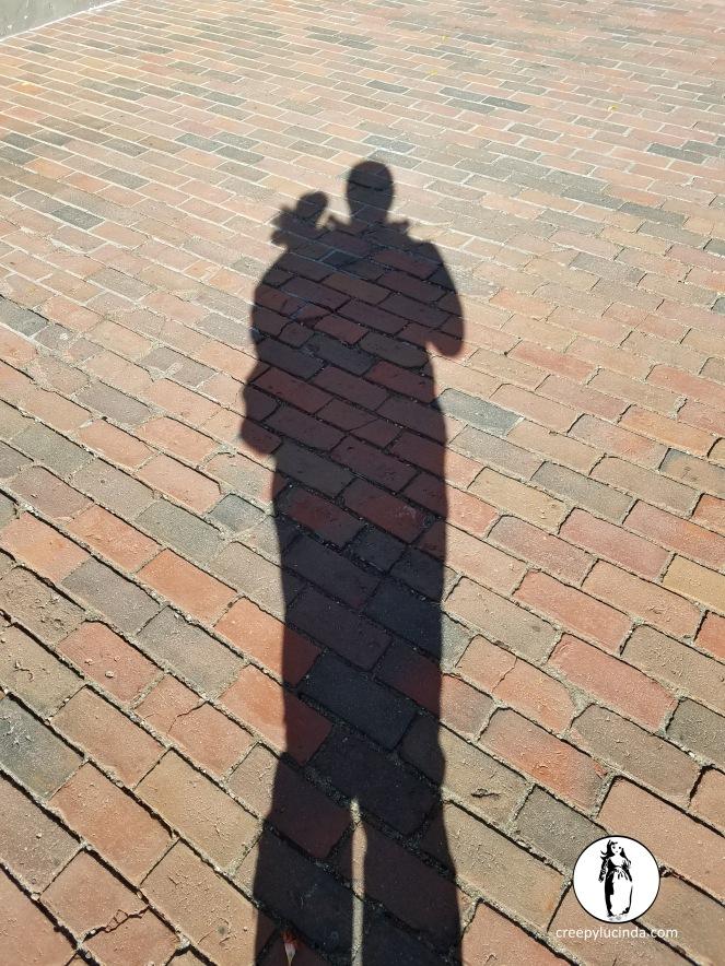 Shadows_PortlandME_LG